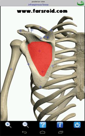 Visual Anatomy Android برنامه اندروید