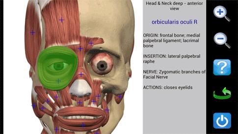 دانلود Visual Anatomy - برنامه آناتومی سه بعدی اندروید
