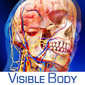 Human Anatomy Atlas Android