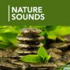 A 1000 Nature Sleep Relax Sounds