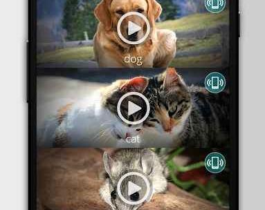 Animals: Ringtones