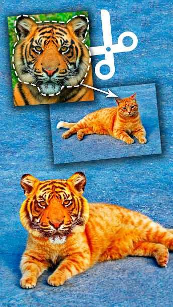 دانلود Cut Paste Photo Seamless Edit Pro 28.7 - برنامه اندروید برش قسمت ها مختلف تصویر !