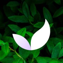 Deep Meditate: Calm Meditation & Sleep App