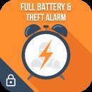 Full Battery Alarm & Theft Alarm