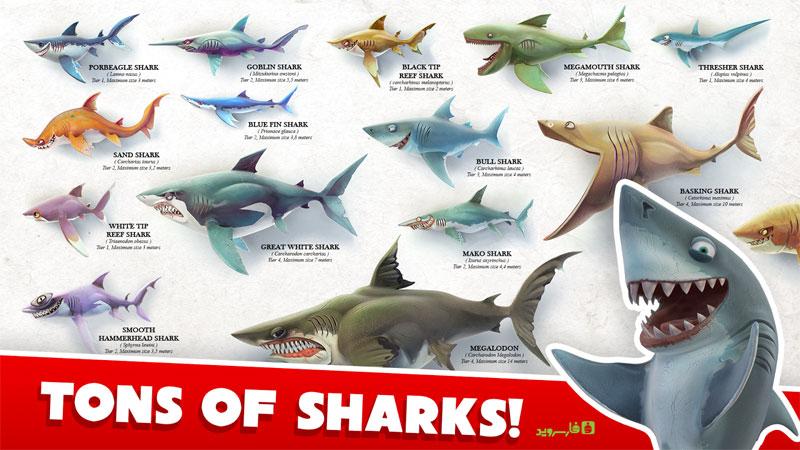 دانلود Hungry Shark World 3.1.2 - بازی کوسه گرسنه اندروید + مود + دیتا