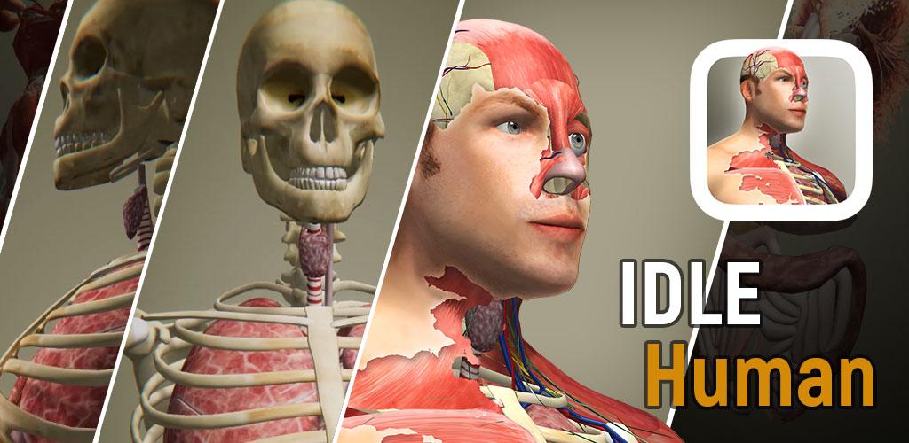 Idle Human