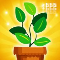 Idle Pot Cultivate