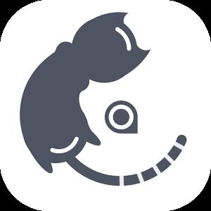 Miaow Clock