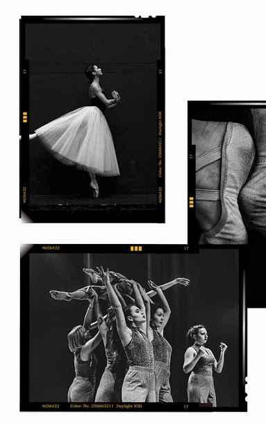 دانلود Mojito - Story Art Maker,Instagram story editor VIP 1.7.119 - برنامه قدرتمند ویرایش استوری اینستاگرام مخصوص اندروید