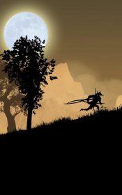 Ninja Arashi Android Games