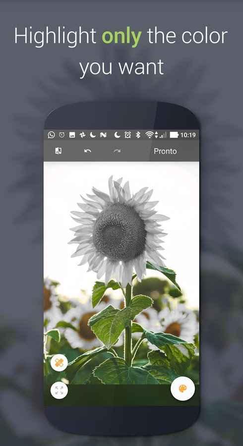 دانلود Paletta - Smart color splash Pro 2.1.3 - برنامه تغییر رنگ هوشمندانه تصاویر اندروید