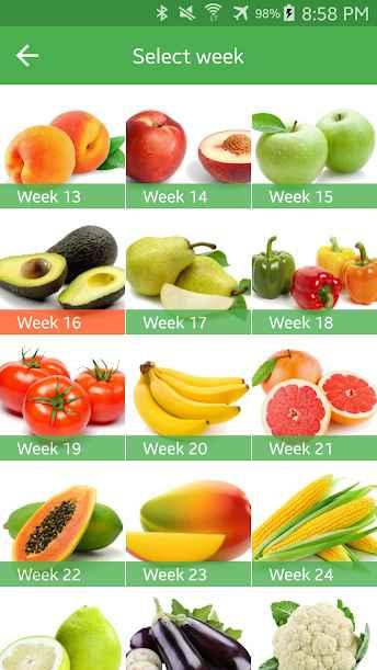 دانلود Pregnancy Week By Week 1.2.27 - برنامه پیگیری هفته های بارداری اندروید !