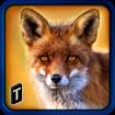Wild-Fox-Adventures-2016-Logo