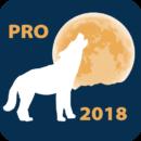 Lunar Calendar PRO